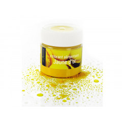 Colorant alimentaire jaune citron 10 g - Les Artistes Paris
