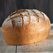 Moule Grand Ovale pour pain SILFORM® - Moule silicone Guy Demarle