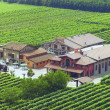 Vinaigre Balsamique blanc Leonardi, 250ml
