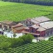 Vinaigre Balsamique de Modène - 2 ans - Leonardi, 250ml